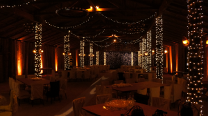 outdoor event lighting